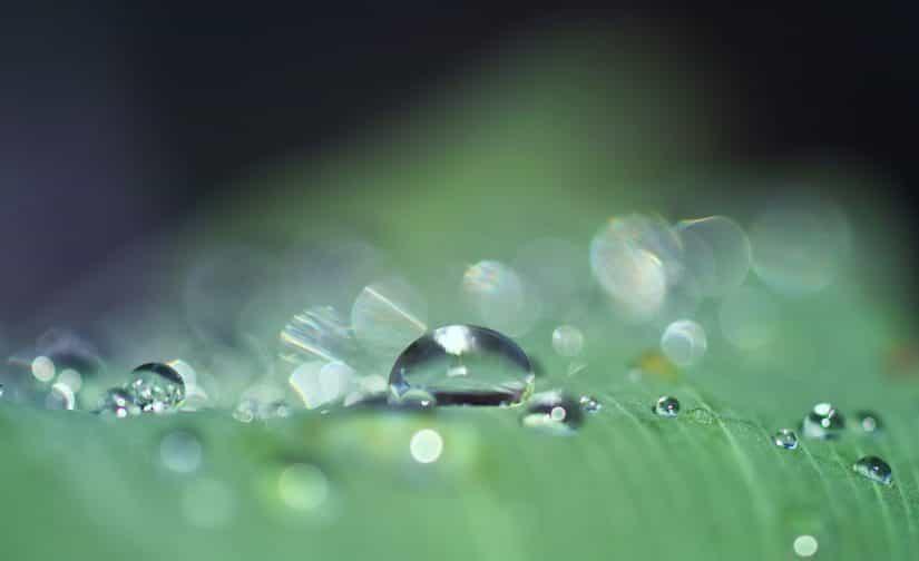 北部九州、梅雨入りしました