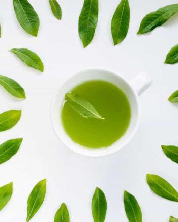 八女-茶-やめ-八女茶-高級茶-お茶-茶-玉露-伝統-本玉露-伝統本玉露-八女-福岡-おいしい-日本茶-緑茶-天雫-高級-通販-産地-成分-効能-健康-販売店-おすすめ-味-9