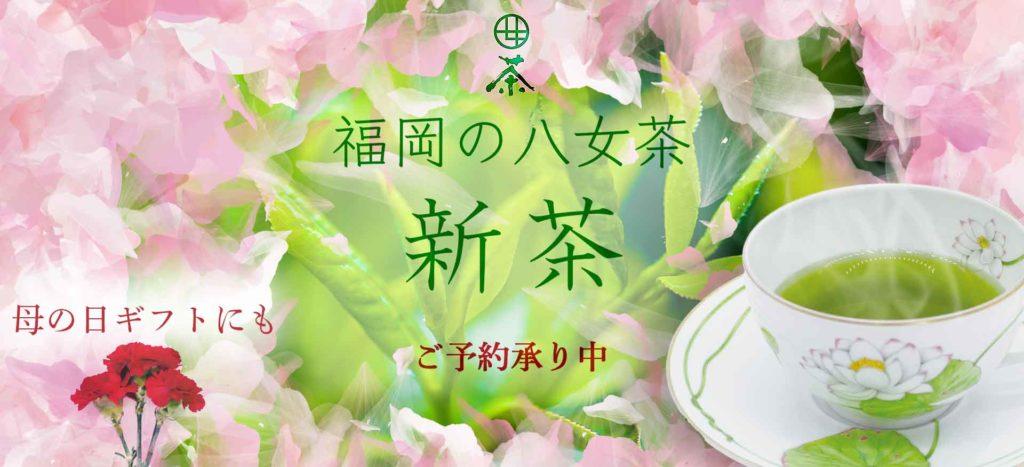 新茶 JAふくおか八女 八女茶 星野茶 伝統本玉露 母の日 一芯庵 オンラインショップ