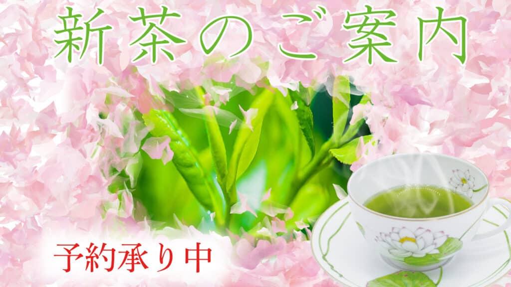 2021 year reiwa 3 new tea yame hosino gyokuro sencha yamecha ocha 新茶 予約 星野 八女 玉露 お茶 茶 令和3年