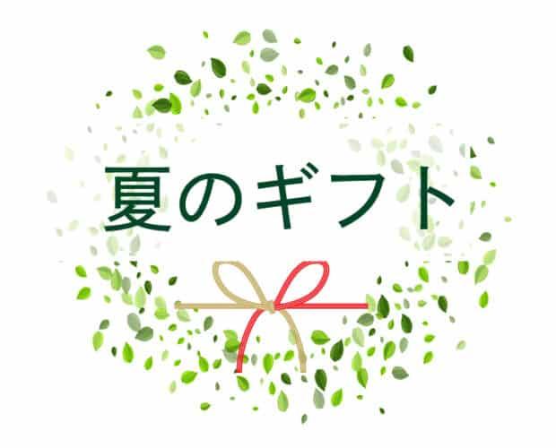 恋する八女茶 看板 八女茶 日本茶 煎茶 玉露 ティーバッグ 1