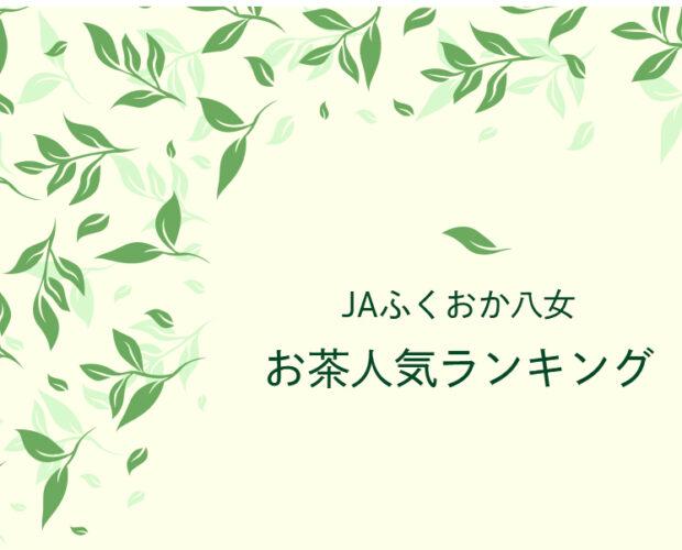 恋する八女茶 看板 八女茶 日本茶 煎茶 玉露 ティーバッグ 2