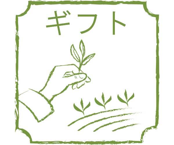gift yamecha yame greentea ocha sencha fukuoka no yamecha present